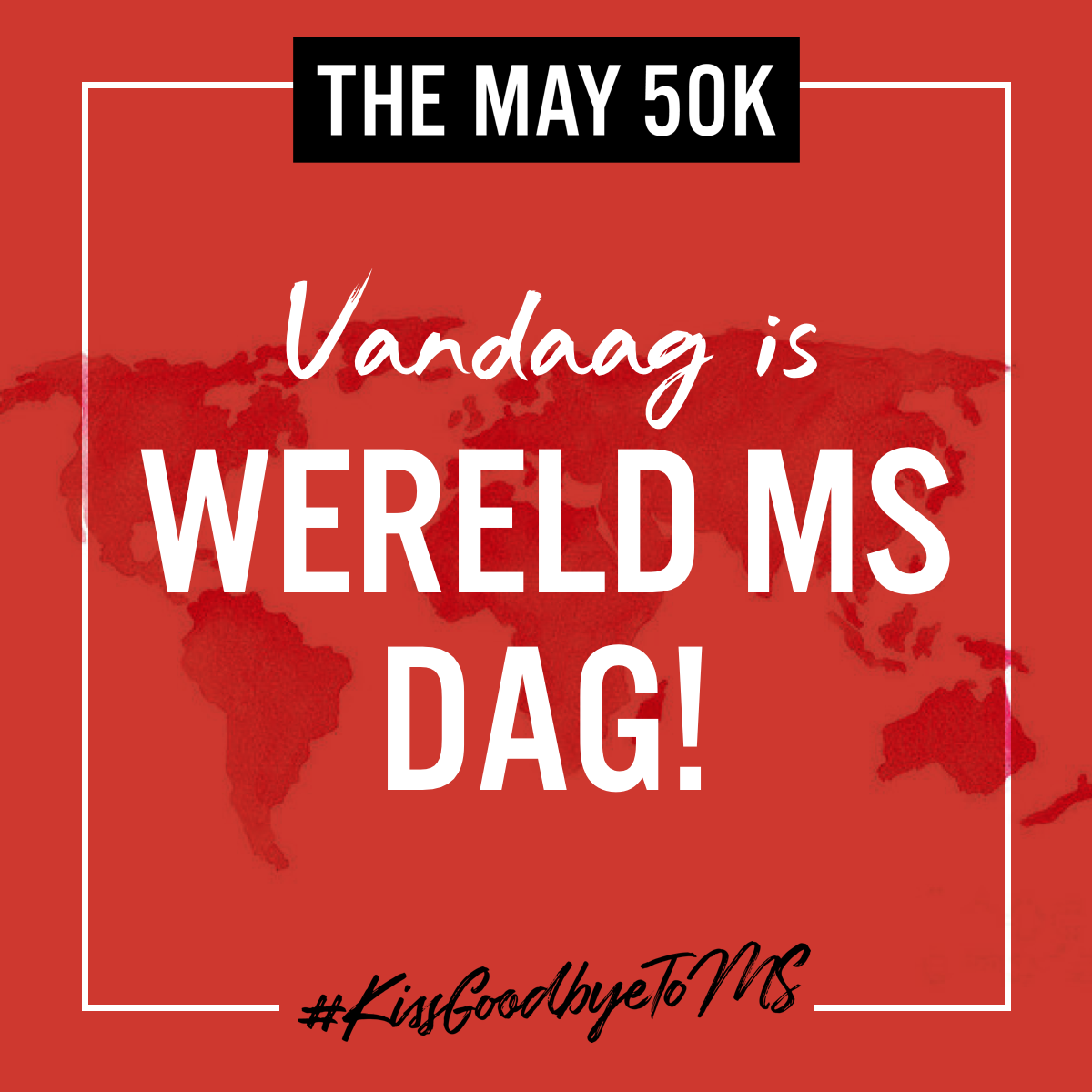 Netherlands SM 24
